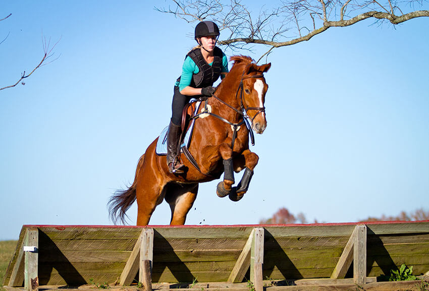 Eventing Derby And Dressage Only Show Lagniappe